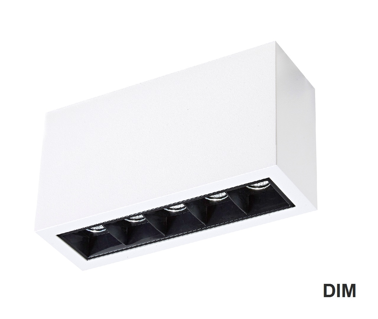 MISTIC ICON 5x2W DIM Matt White/Black